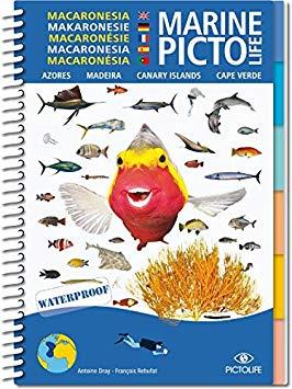 Visherkenning Marine Picto Macaronesie