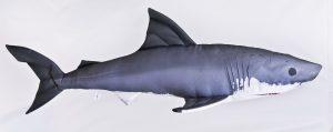 Gaby Witte Haai viskussen