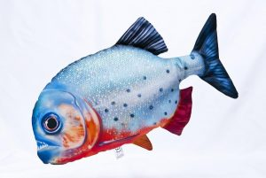 Gaby roodbuik piranha viskussen