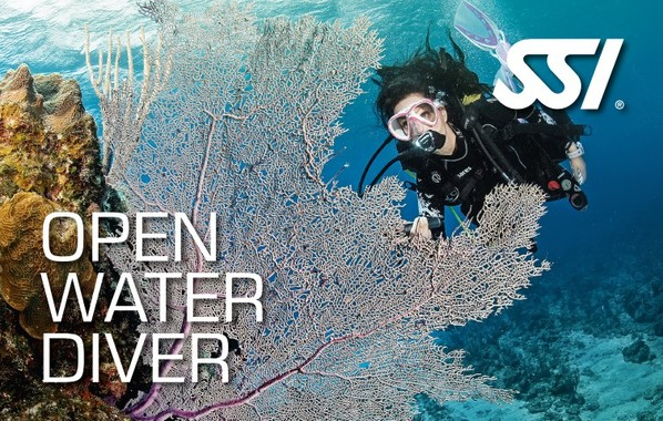 SSI Open water duikopleiding manual boek