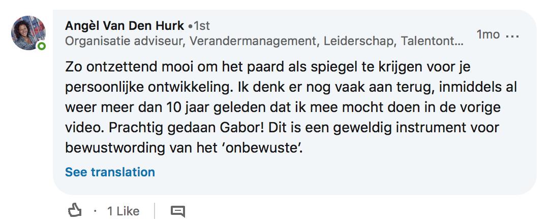 ervaringen-linked-in-bewust-competent Angèl van den Hurk