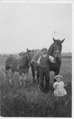 Horses & Cecil Rose - photo provided by Tim Rose
