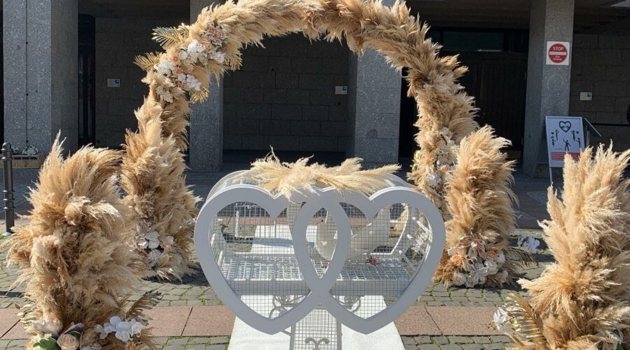 Hochzeitstauben buchen Aachen