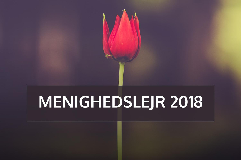 Menighedslejr 2018