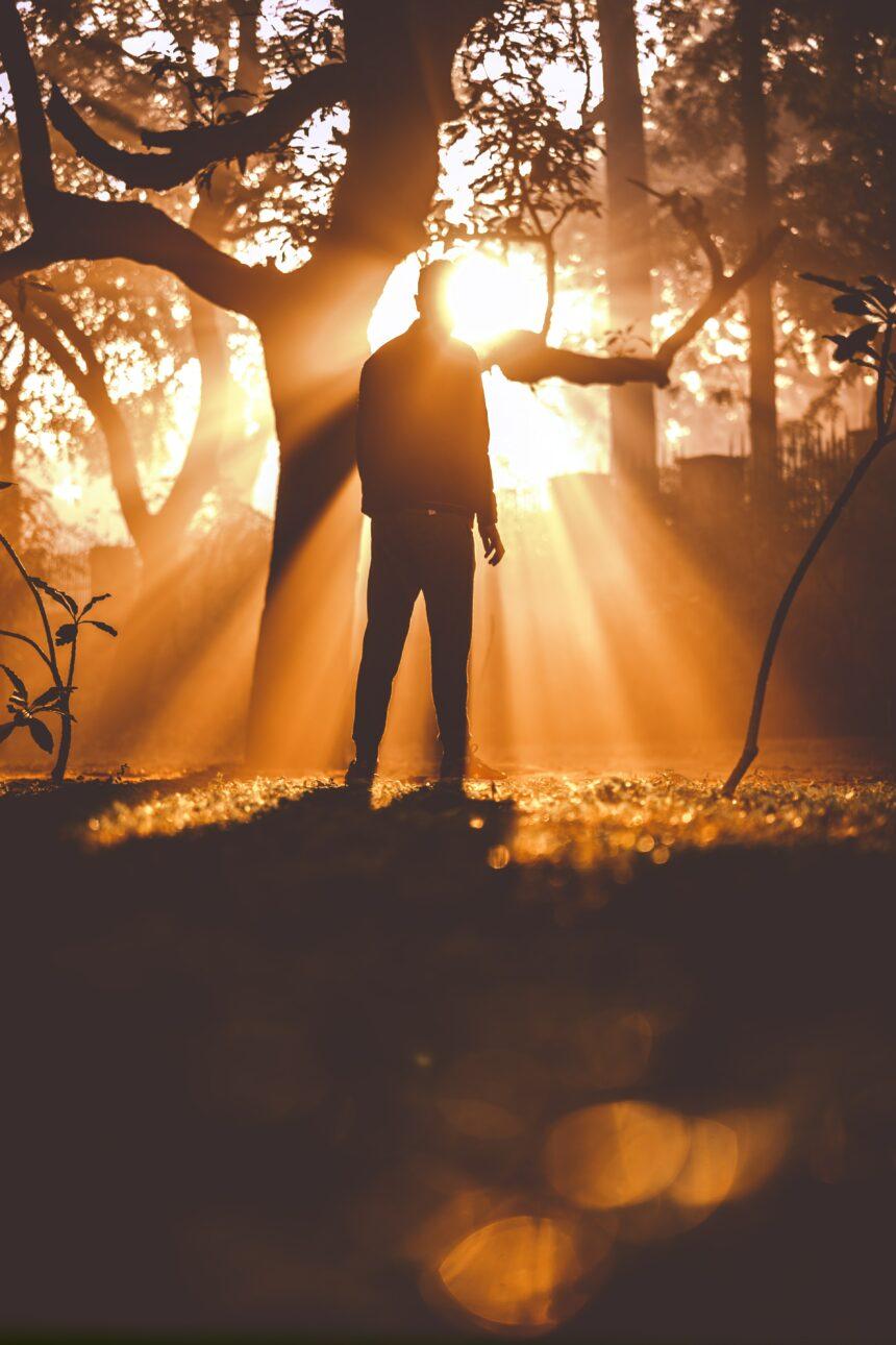 Lyset skinner i mørket