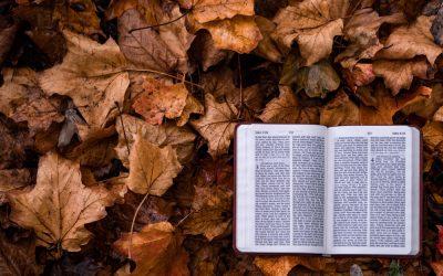 Psalms 121 Read by Priscilla