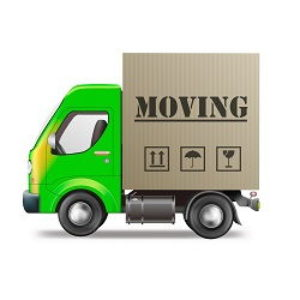 South coast removals
