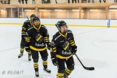 DSC_0212-Erica-Udén-Johansson-Fanny-Rask-Lisa-Johansson-2019oktober19_