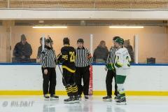 500_1440-Ishockey-2020januari04_