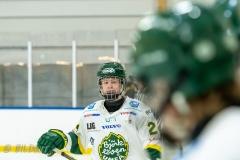 500_1485-Ishockey-2020januari04_