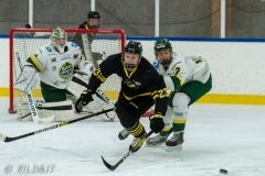 500_1507-Ishockey-2020januari04_
