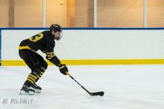 500_1508-Ishockey-Vincent-Reimer-2020januari04_