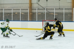500_1542-Ishockey-2020januari04_