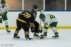 500_1550-Ishockey-2020januari04_