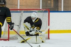 500_1575-Alec-Rajalin-Scharp-Ishockey-2020januari04_