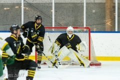 500_1588-Ishockey-2020januari04_