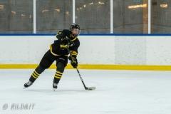 500_1636-Ishockey-2020januari04_