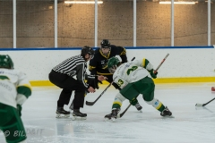 500_1642-Ishockey-2020januari04_