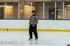 500_1644-Ishockey-2020januari04_