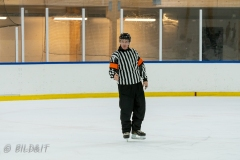 500_1726-Ishockey-2020januari04_