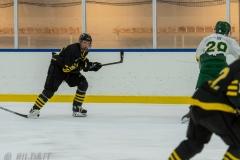 500_1767-Ishockey-2020januari04_