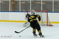 500_1775-Ishockey-2020januari04_