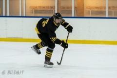 500_1815-Henrik-Hallberg-Ishockey-2020januari04_