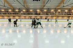 850_0006-Ishockey-2020januari04_