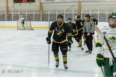 850_0008-Ishockey-2020januari04_