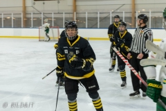 850_0013-Ishockey-2020januari04_