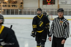 850_0018-Ishockey-2020januari04_
