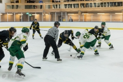 850_0023-Ishockey-2020januari04_