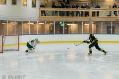 850_0037-Ishockey-2020januari04_