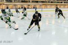 850_0044-Ishockey-2020januari04_