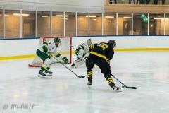 850_0050-Ishockey-2020januari04_