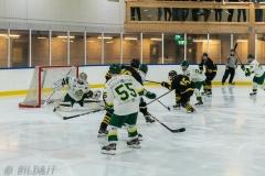 850_0056-Ishockey-2020januari04_