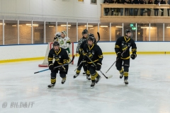 850_0096-Ishockey-2020januari04_