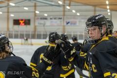 850_0115-Ishockey-2020januari04_