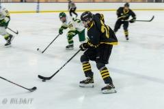850_0159-Ishockey-2020januari04_