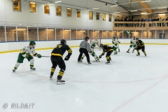 850_0201-Ishockey-2020januari04_