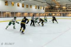 850_0202-Ishockey-2020januari04_