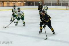850_0211-Ishockey-2020januari04_