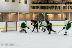 850_0223-Ishockey-2020januari04_
