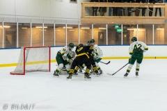 850_0227-Ishockey-2020januari04_