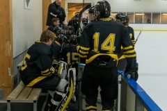 850_0251-Ishockey-2020januari04_