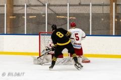500_2132-Ishockey-2020januari05_