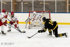 500_2148-Ishockey-2020januari05_