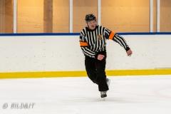 500_2173-Ishockey-2020januari05_