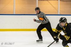 500_2174-Ishockey-2020januari05_