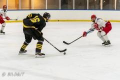 500_2175-Ishockey-2020januari05_